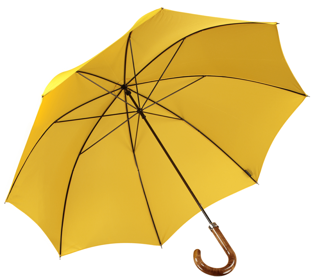 Cad & The Dandy Walking Umbrella in Yellow