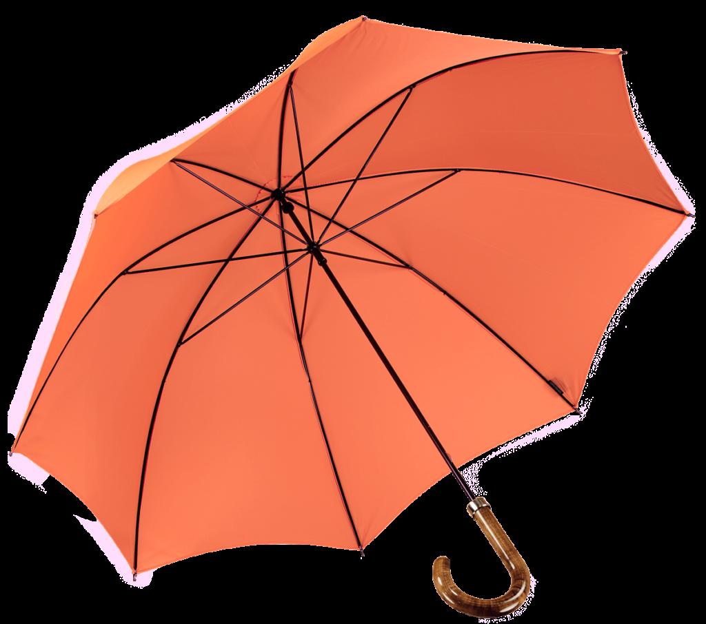 Cad & The Dandy Walking Umbrella in Orange