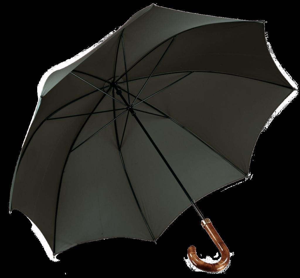 Cad & The Dandy Walking Umbrella in Racing Green