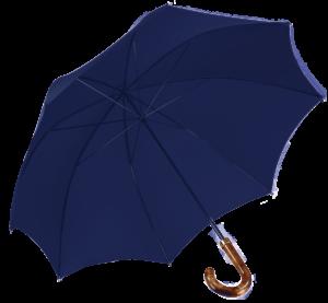 french-blue-walking-umbrells